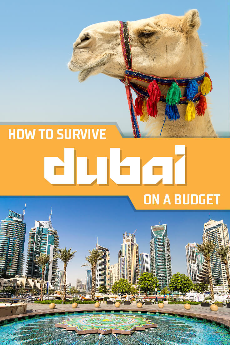 How to Survive Dubai on a Budget